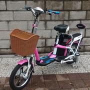 電動腳踏車 、摺疊電動腳踏車